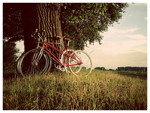 retro vintage singlespeed