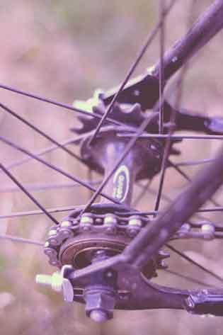 singlespee fahrrad