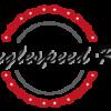Günstige Singlespeed Teile:  Kettenblätter, Reifen, Lenker